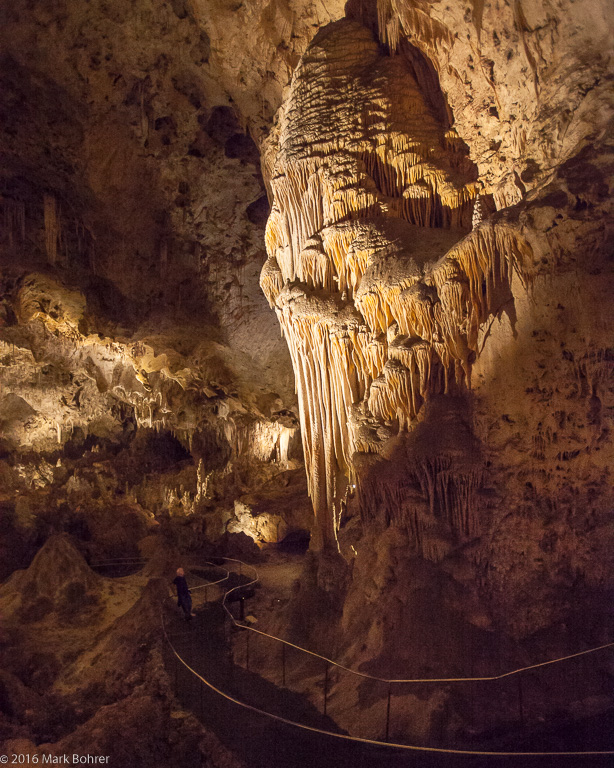 Pondering the teeth - Carlsbad Caverns
