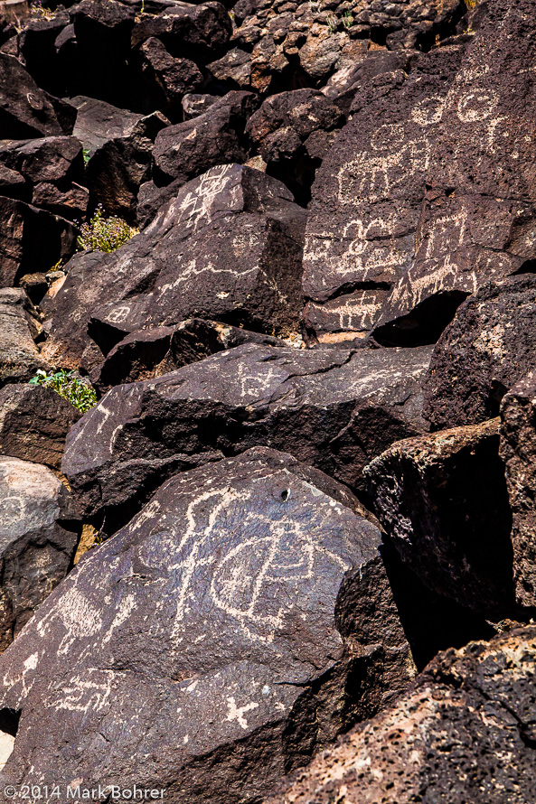 Petroglyphs, Piedras Marcadas Canyon, Petroglyph National Monument