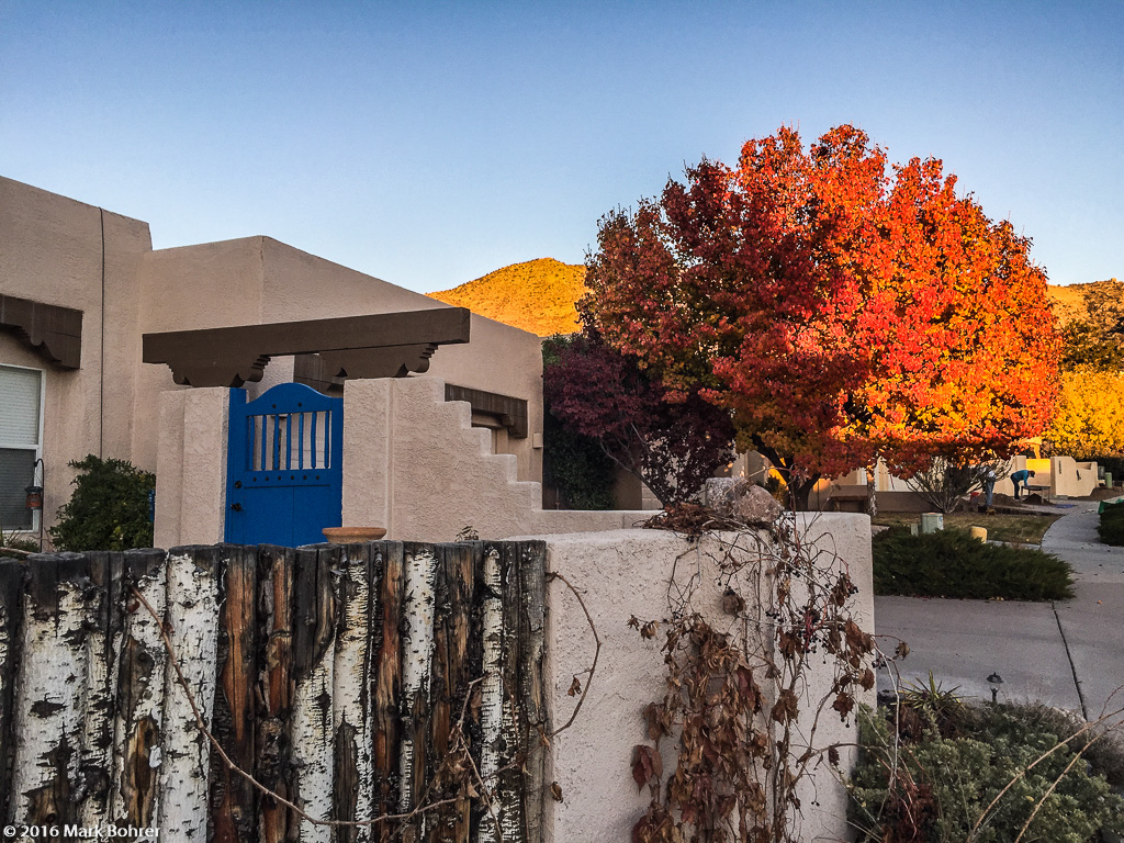 Non-native color, Albuquerque, New Mexico