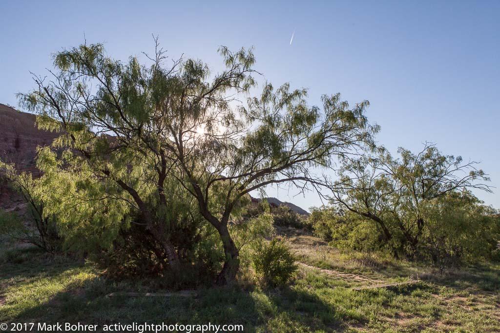 Unofficial trailhead, Palo Duro Canyon