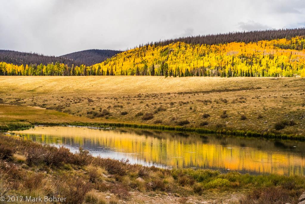Rocky Mountain 'foliage' on the way to Slumgullion Pass, Colorado