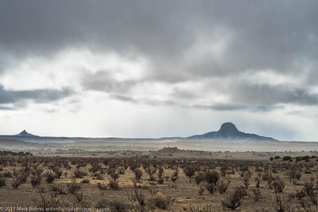 Uniform Plant Distribution, Cabezon Peak, New Mexico
