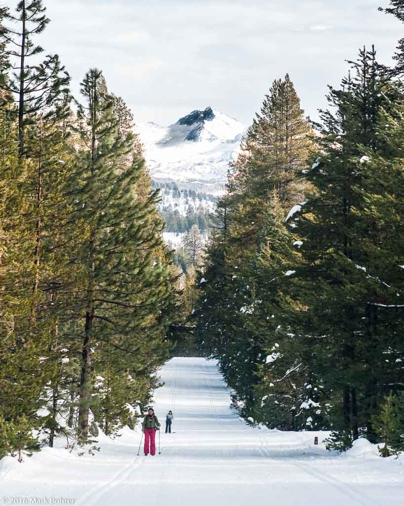 XC skiing the Glacier Point Road