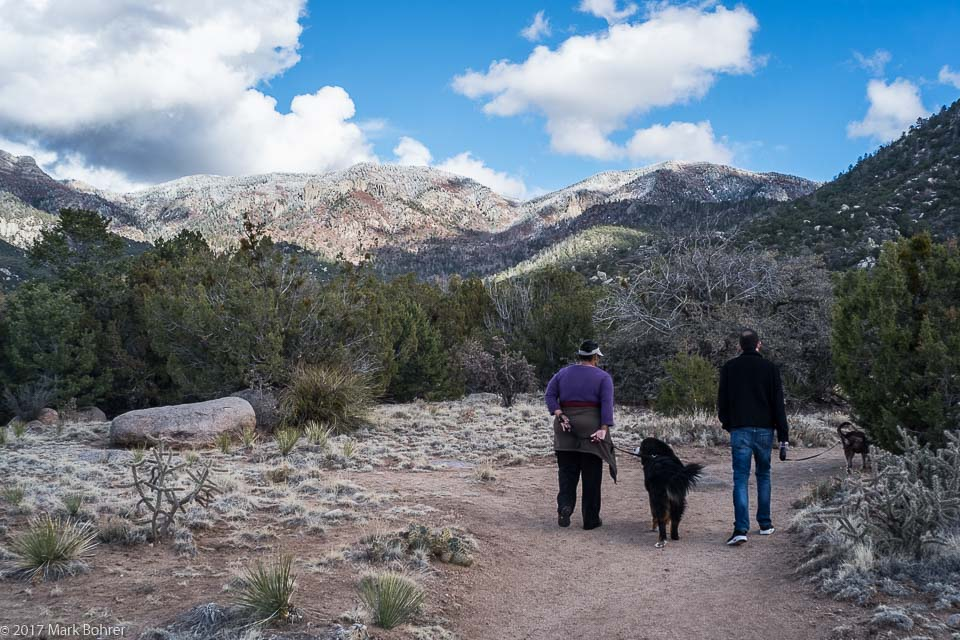 Walking the Pino Trail