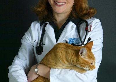 McBride_orange-cat1-76