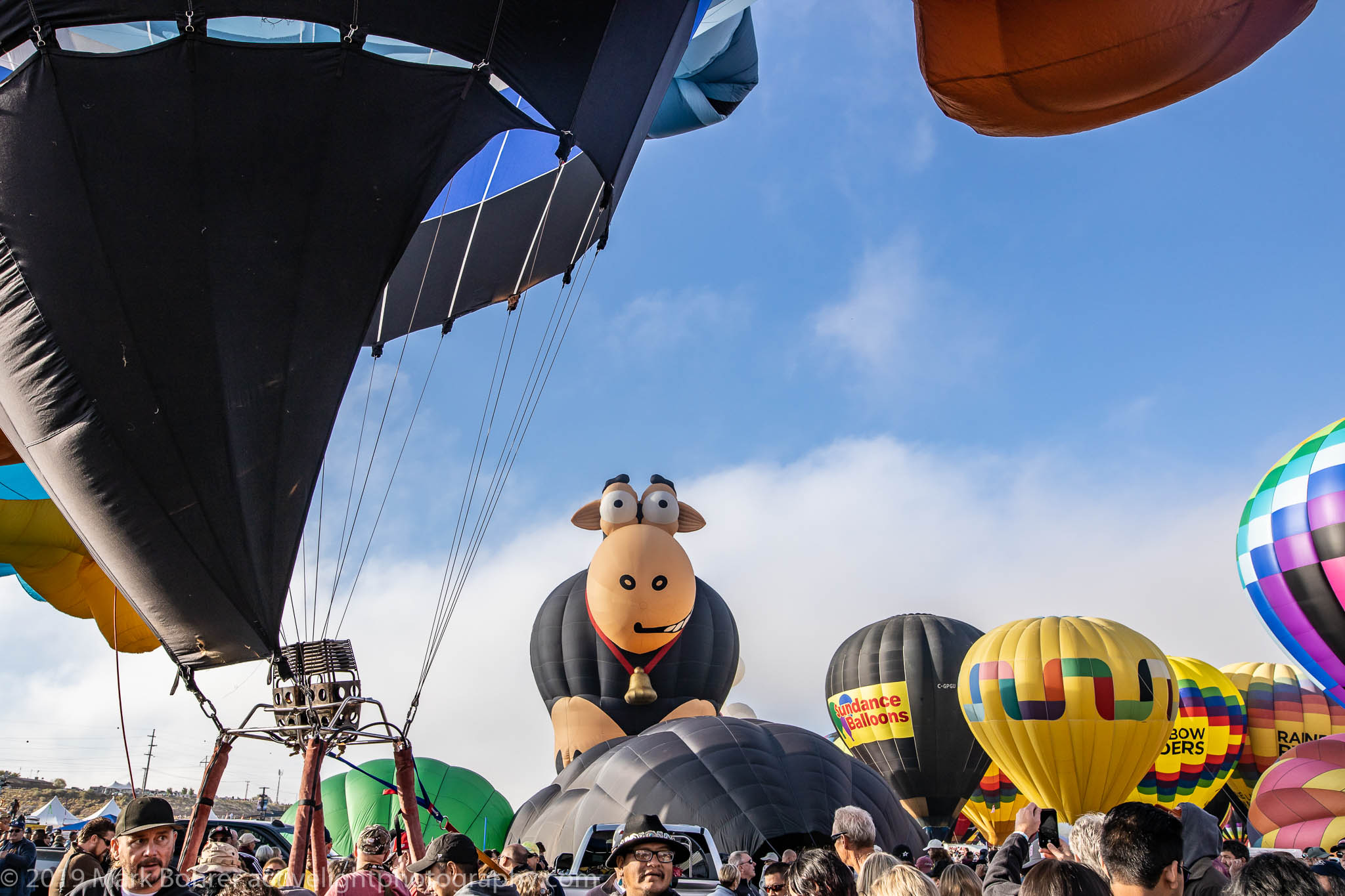 Don't have a cow, man - Albuquerque International Balloon Fiesta, Active Light Photography