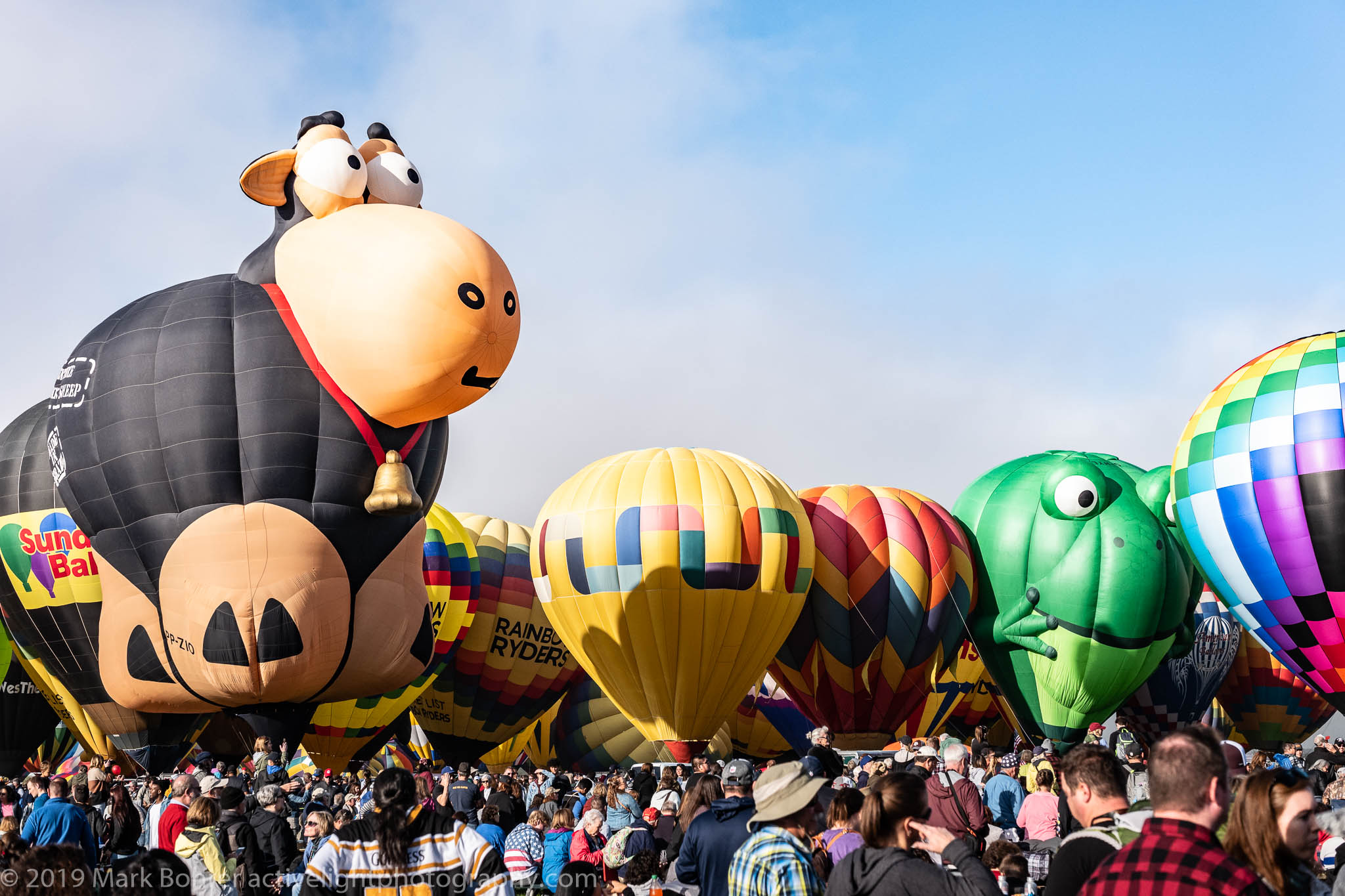Cow and Frog - Albuquerque International Balloon Fiesta, Active Light Photography